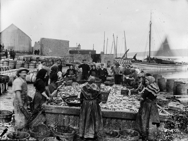 Image: Shetland Museum & Archives. Photographer: A Abernetht, 1890s. Herring station at North Ness