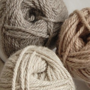 Chilla-Valley-Alpacas-Chunky-Alpaca-Shetland-Lambswool6